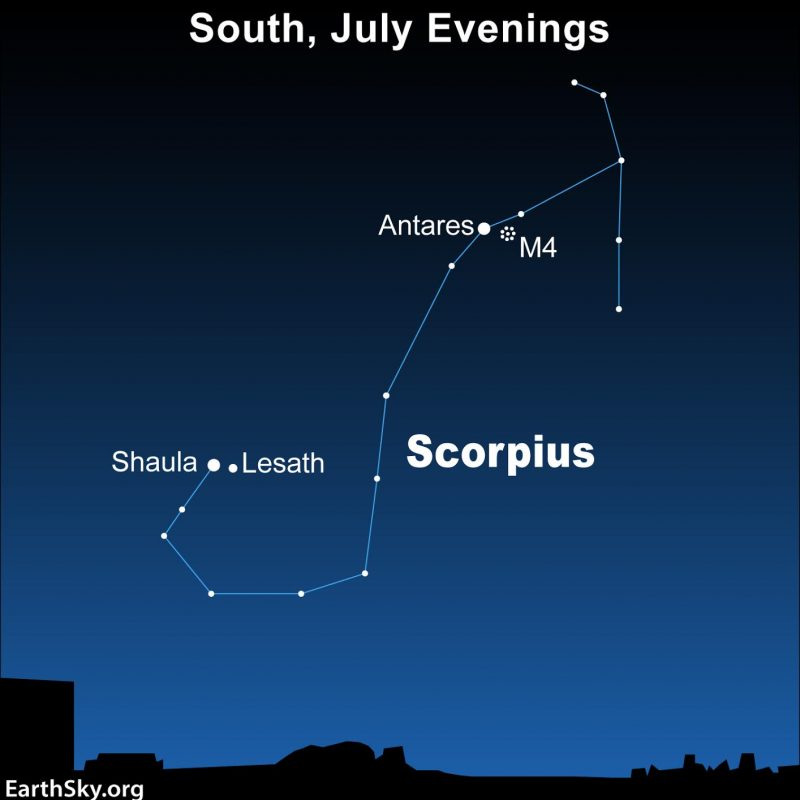 A chart showing Scorpius, a constellation shaped like the letter J, on a blue background.