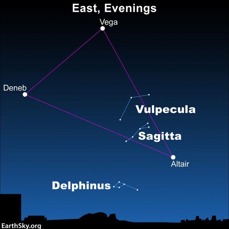 Star chrt showing Summer Triangle, Delphinus, Vulpecula and Sagitta.