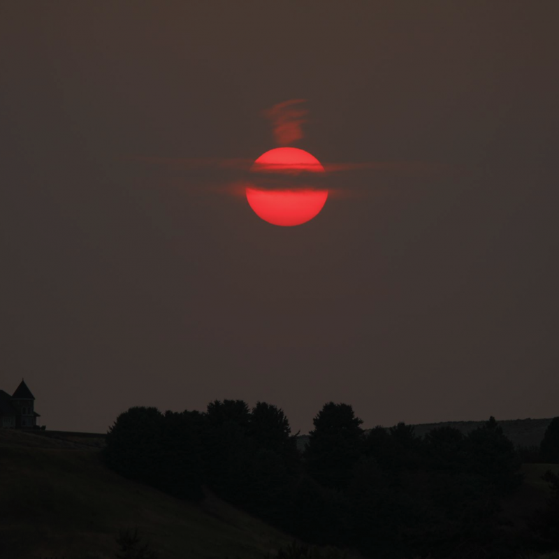 Wildfire smoke caused this very red sun, crossed by clouds, in a darkened sky, above a dark horizon.