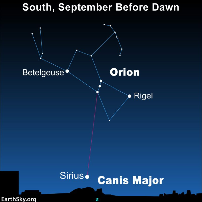 Sky chart showing Orion's Belt pointing to Sirius