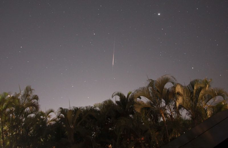 Palm trees in front with vertical streak in center against starry sky.