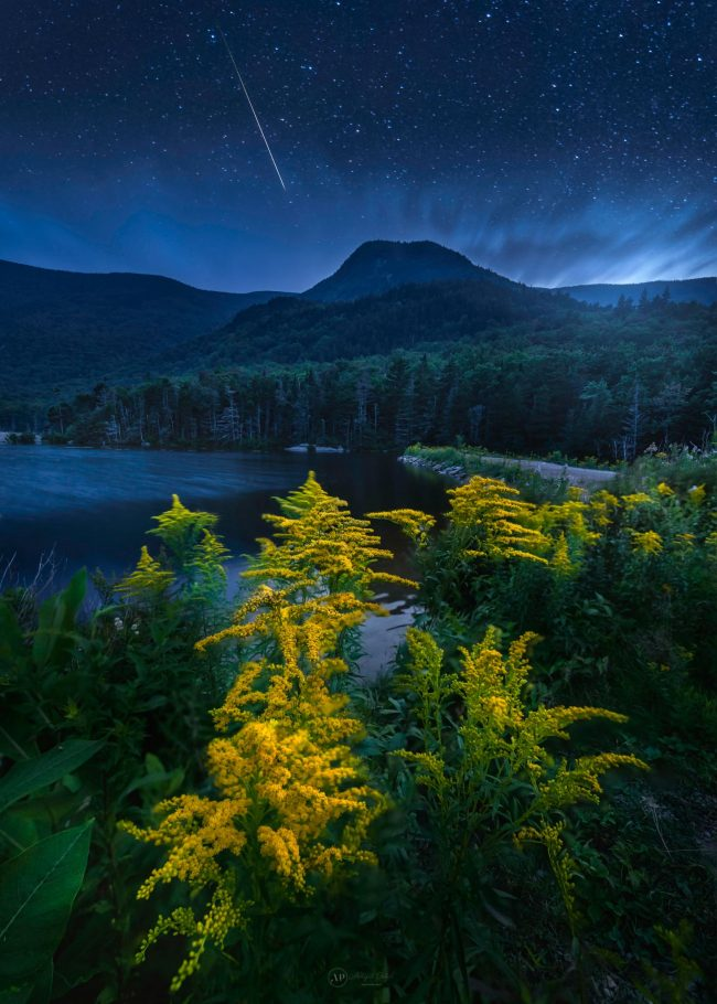 Mountain below, meteor above, goldenrod flowers in near foreground.
