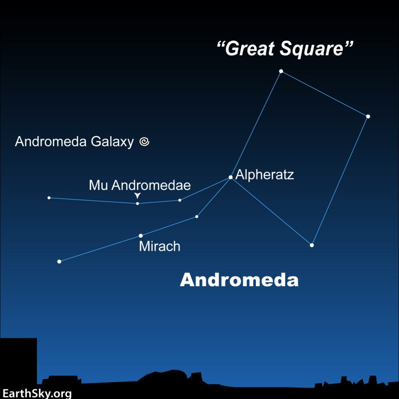Constellation Andromeda and asterism Great Square with labeled Andromeda galaxy.
