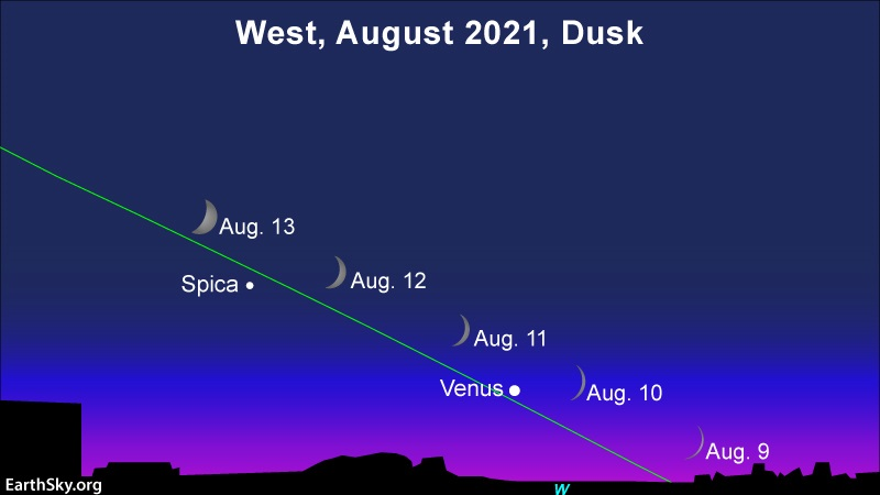 Visible planets in August 2021: Sequential positions of crescent moon relative to Venus and star Spica.