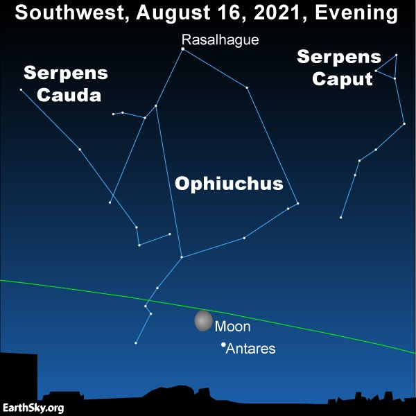 Ophiuchus the Serpent Bearer above the moon and Antares in the southwest sky.