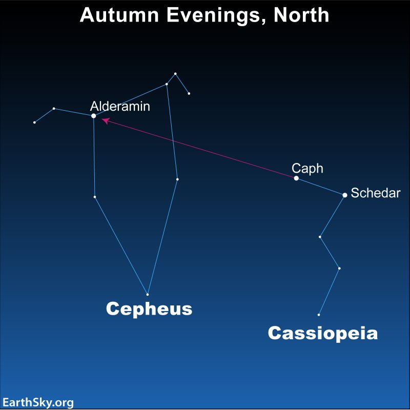 Star chart showing Cepheus and Cassiopeia.