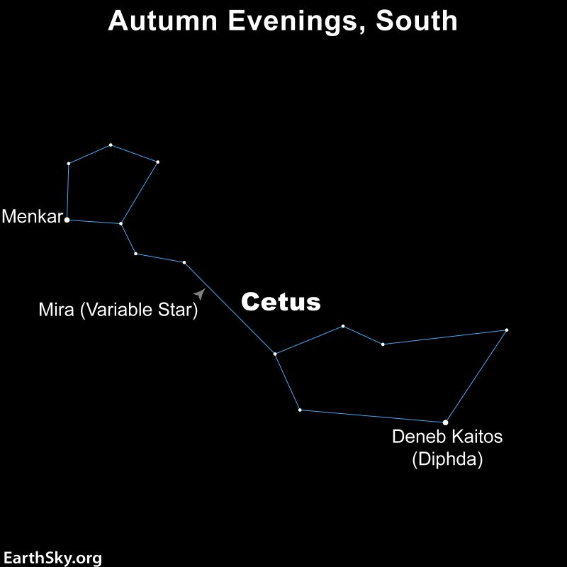 Chart of the constellation Cetus highligting the stars Debeb Kaitos and Menkar.