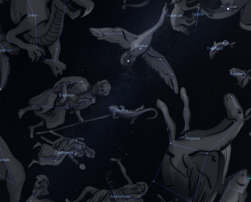 Star chart with images of constellations, a small lizard among them.