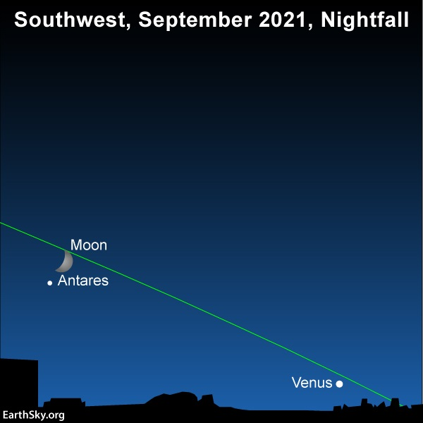 A chart showing Venus near the sunset point, and the moon and Antares above it.