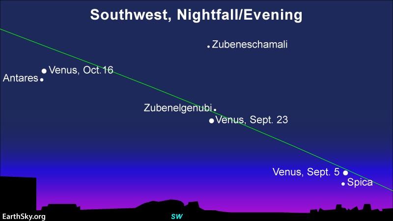 Venus-Spica conjunction on September 5, Venus-Zubenelgenubi conjunction on September 23 and Venus-Antares conjunction on October 16.