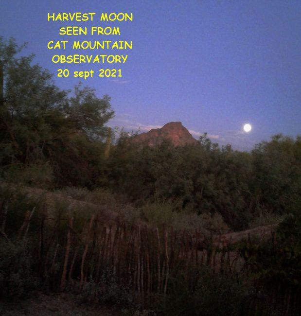 The harvest full moon rising southwest of Cat Mountain in Arizona.