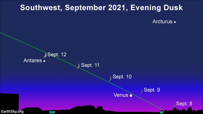 Young moon and Venus, and then Antares, in the September 2021 evening sky.