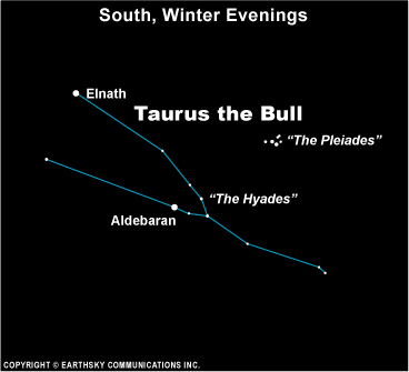 Chart of constellation Taurus with Hyades star cluster in middle and tiny Pleiades cluster above it.